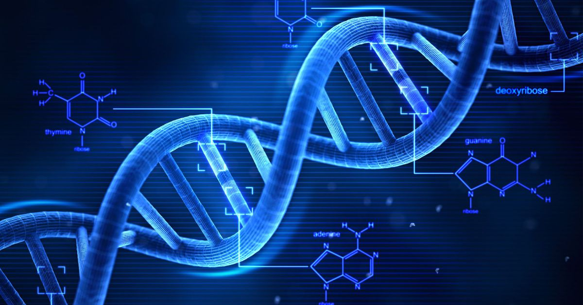 Cracking The Code: Mysteries Of The Human Genome Revealed